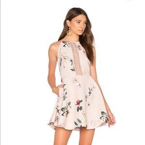 *NWT* Keepsake The Label Dress